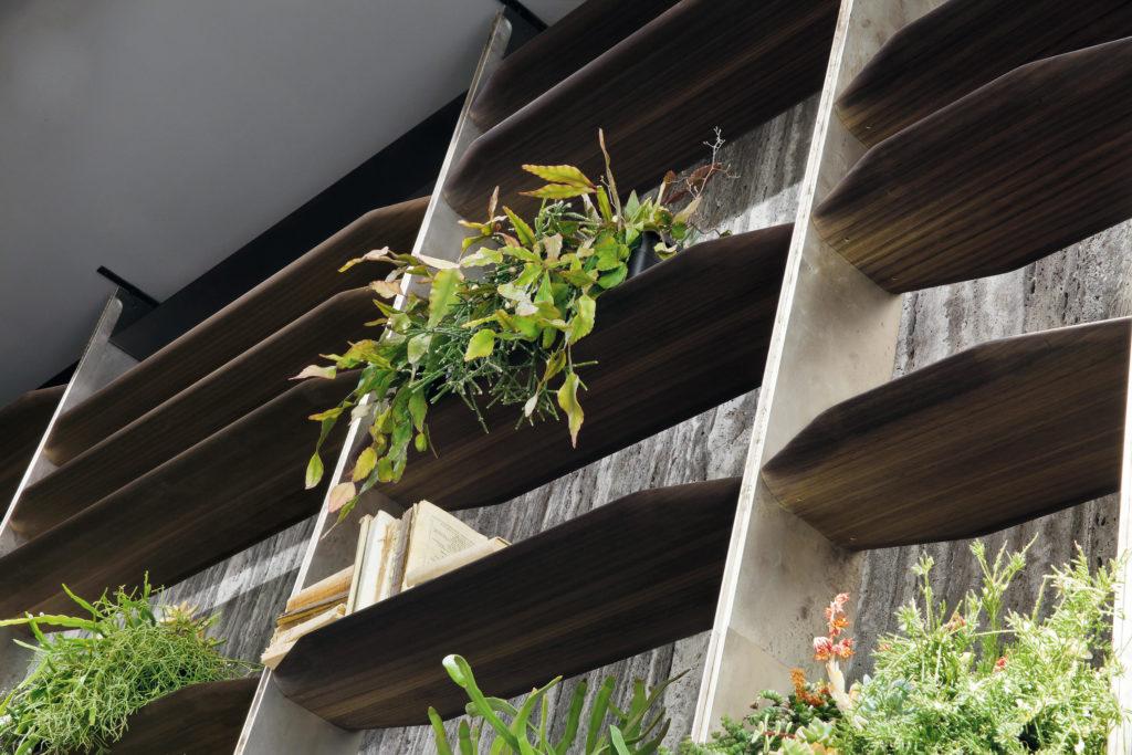 tn-blade closeup plants bookshelf